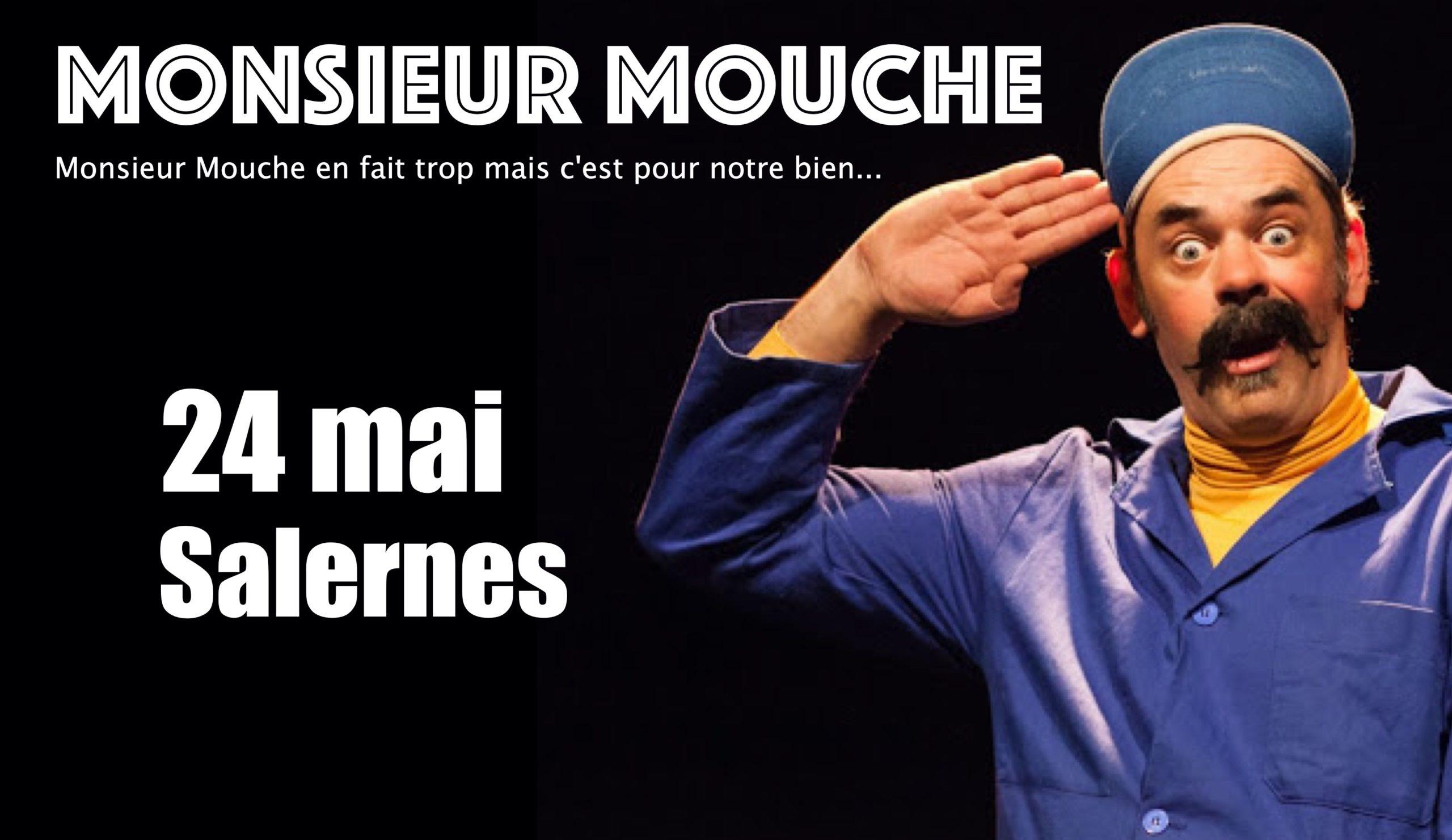 mouche Salernes